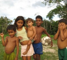 A Memorable Experience in the Amazon