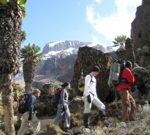Diaries of my Kilimanjaro Hike- Day 4