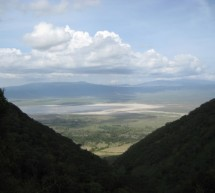 A Safari in the Serengeti and Ngorongoro Crater- Part 2