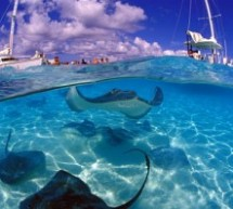 Top best Snorkelling Destinations in the World