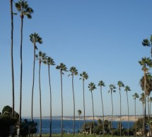 California Dreaming: The Top 5 Places to Visit on the West Coast
